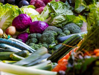 A box of colourful vegetables including marrows, courgettes, red cabbage, onions, Chinese cabbage, carrots, leeks, red potatoes and aubergines